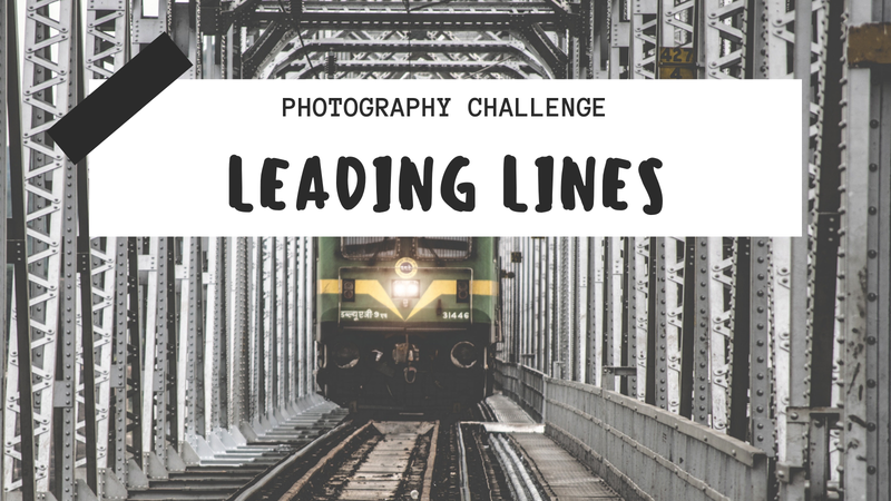 "featured image thumbnail for post ""Leading Lines"" - Photography Challenge"