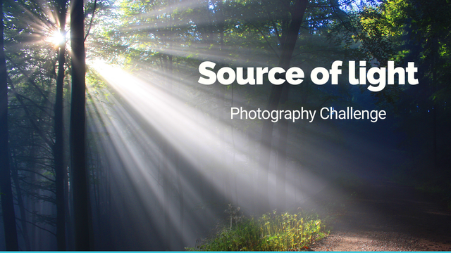 "featured image thumbnail for post ""Source of light"" - Photography Challenge"
