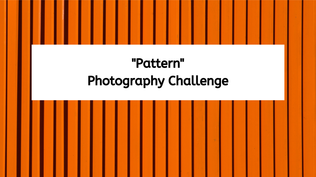 "featured image thumbnail for post ""Capture a Pattern"" - Photography Challenge"